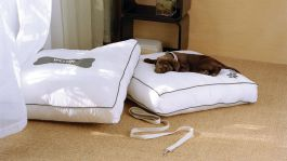 wesde-41975-Heavenly-dog-bed